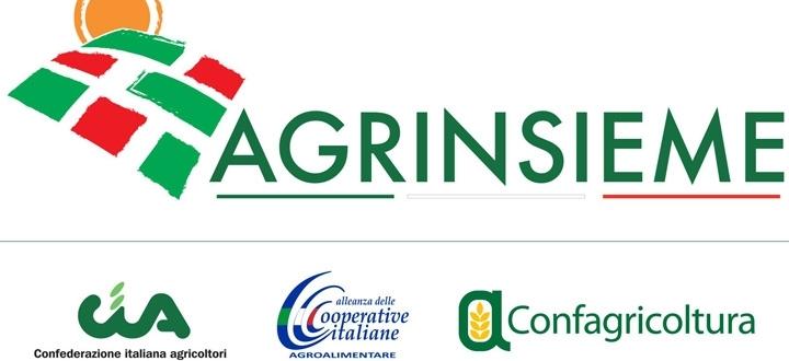 Latte: Agrinsieme Viterbo chiede al Ministro Martina la convocazione del tavolo di settore